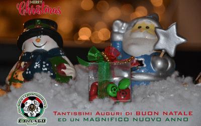 Auguri Natale Cailungo 2019